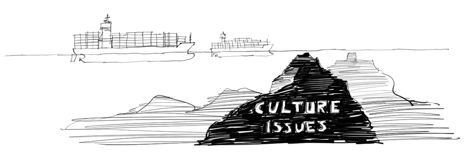 Culture issues